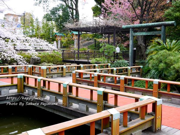 【御朱印巡り】原宿 東郷神社 庭園の橋