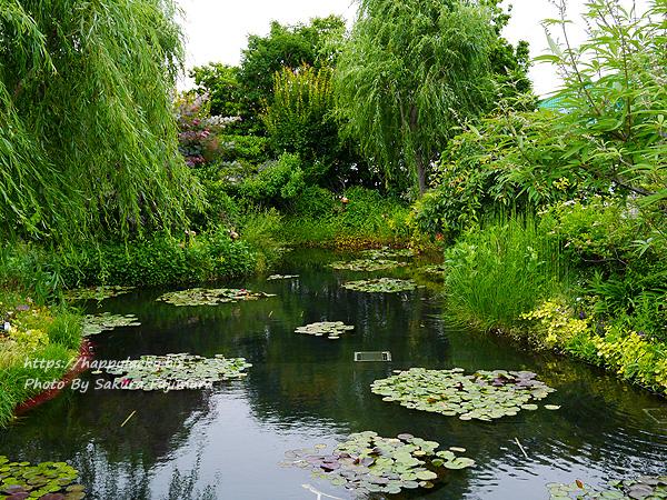 西武池袋本店屋上空中庭園 モネの庭「睡蓮の池」 その1
