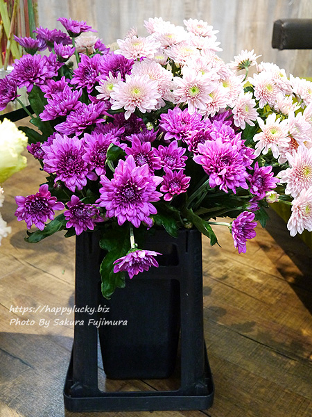 日比谷花壇 秋のフラワーアレンジメントに使われる菊(スプレーマム)