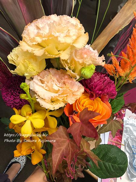 選んだ秋の花と植物10本