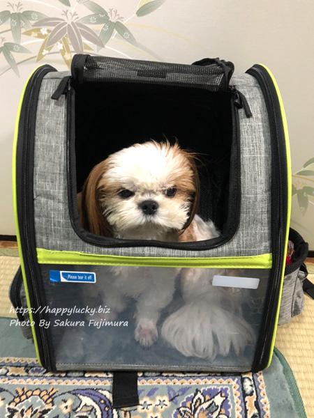 アマゾンで買ったペットキャリーバッグ リュック 容量を拡張可能なバックパック 全体