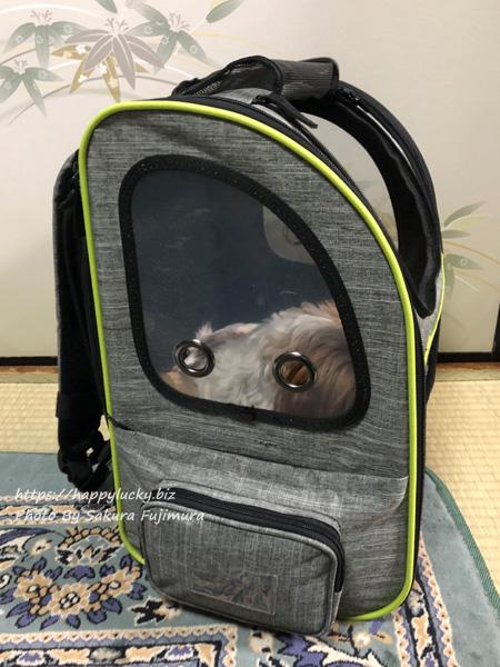 ペキュート[Pecute] ペットキャリーバッグ リュック 寝ている犬
