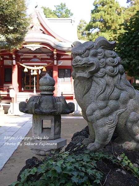 千葉県柏市 柏諏訪神社 狛犬