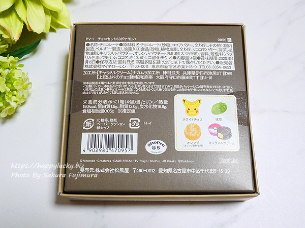 ポケットモンスター(ポケモン) バレンタイン2020 チョコレート「チョコセット」パッケージ裏